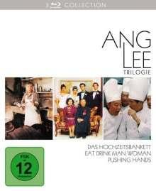 2016.DVD.Ang Lee